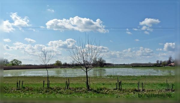hochwasser (13)