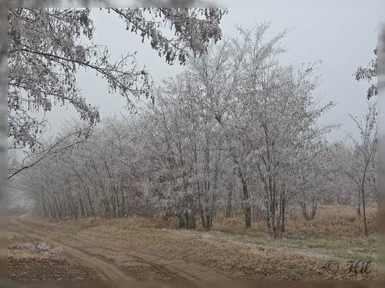 winter (18)