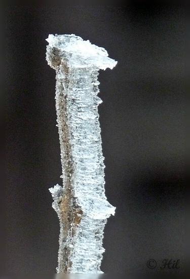 winter (20)